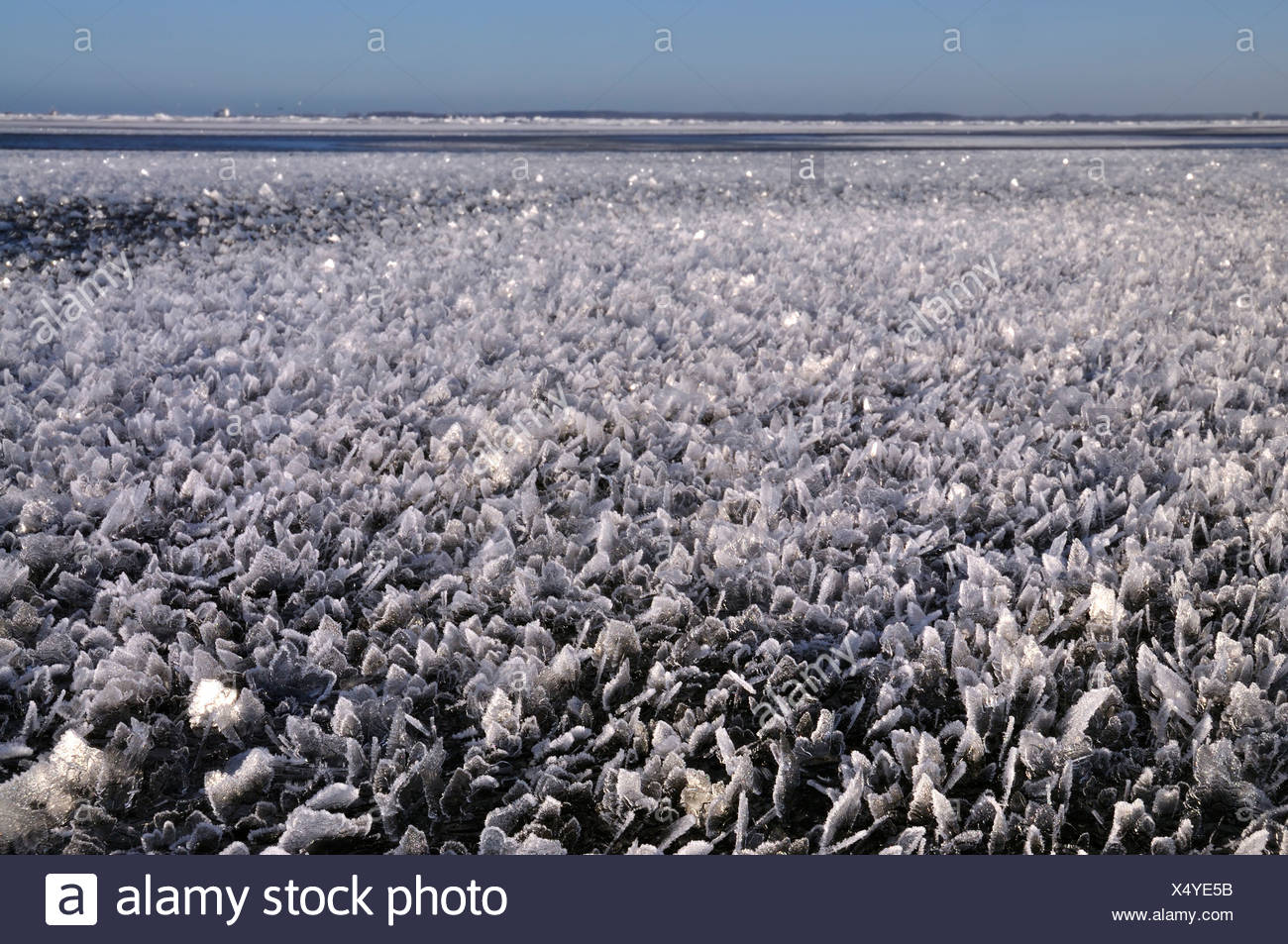 About over shallow water area of the Baltic Sea off Stein, Probstei, Ploen district, Schleswig-Holstein, Germany, Europe Stock Photo