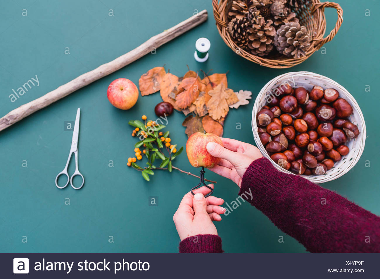 DIY, autumnal decoration, mobile, natural materials, crafting, women's hands, detail, Stock Photo