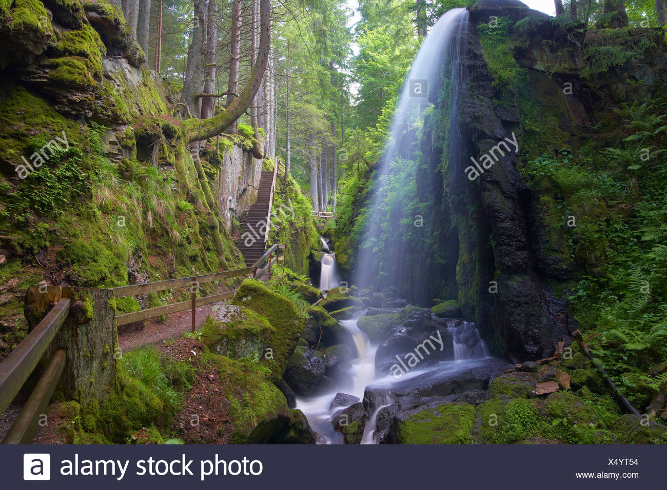Cascade of the river Alb, Menzenschwand in valley of the river Alb, Summer day, Black Forest, Baden-Wuerttemberg, Germany, Europ - Stock Image