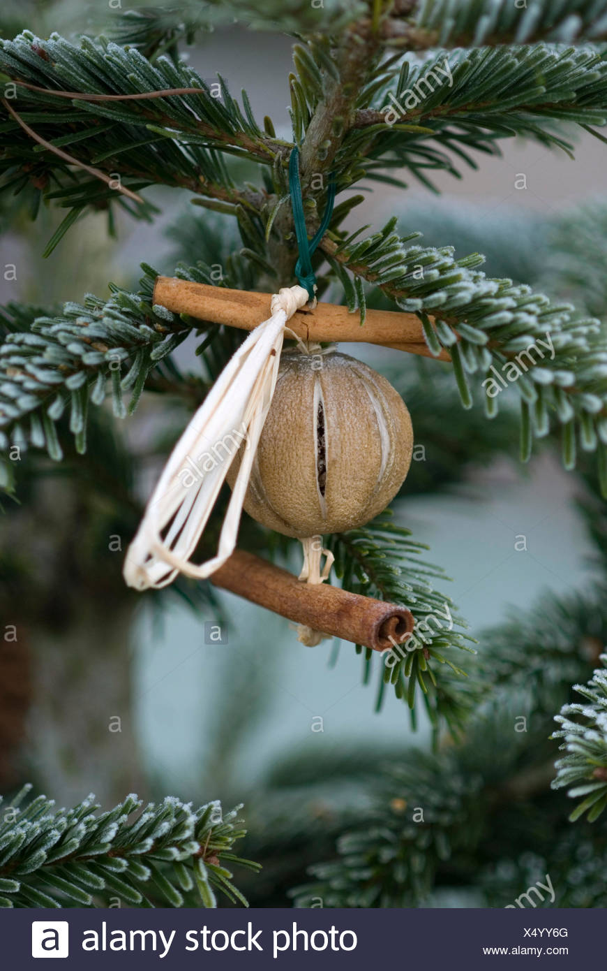 outdoor christmas decoration natural products - Natural Outdoor Christmas Decorations