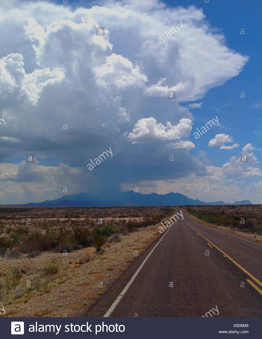 USA, Texas, Brewster County, Big Bend National Park, Desert highway - Stock Image