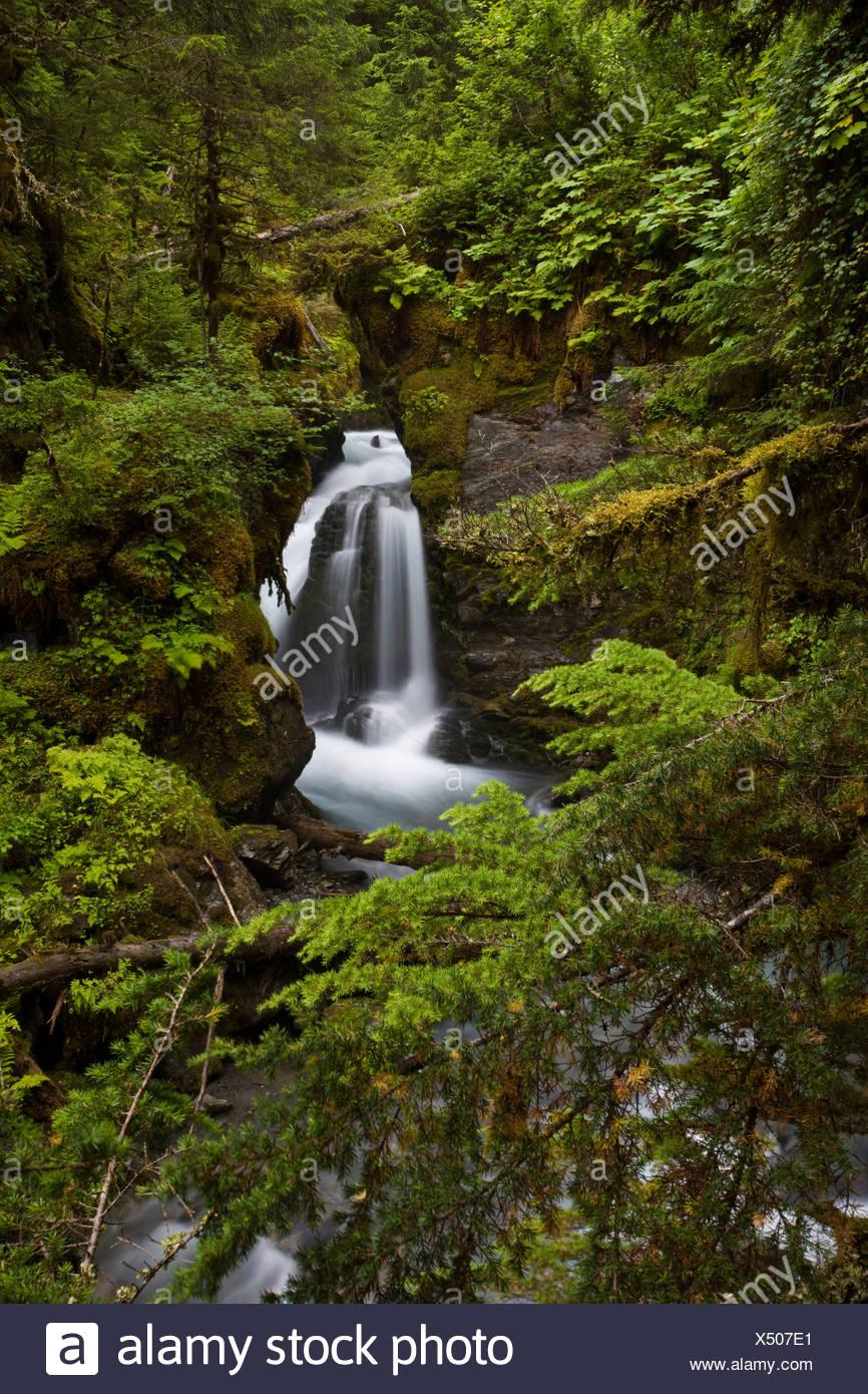 Virgin Falls framed by green vegitation in Alaska during Summer - Stock Image
