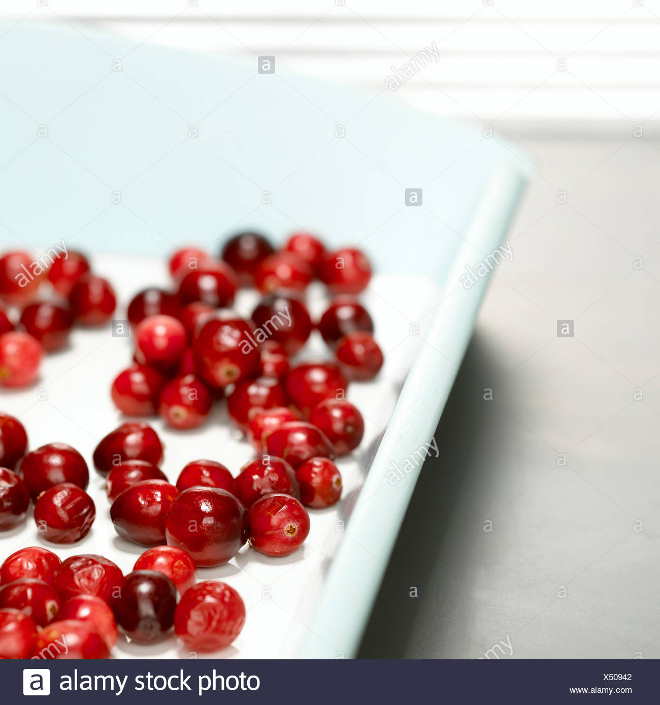 Cranberries on tray, close-up - Stock Image