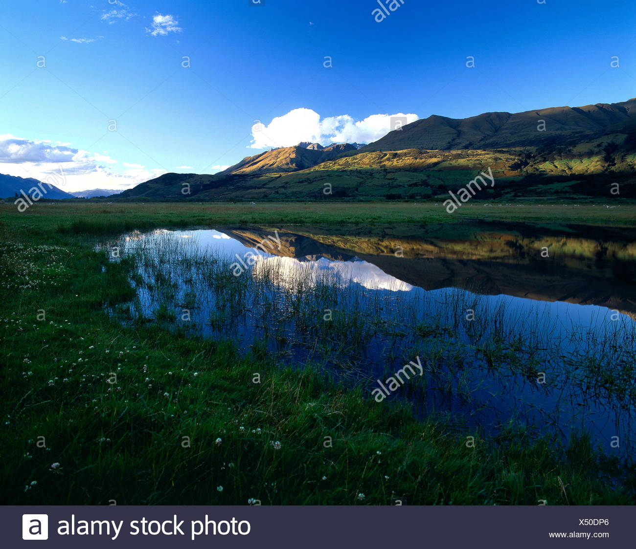 New Zealand. Queenstown Region. Hills reflected in valley lake in late evening shadows. - Stock Image