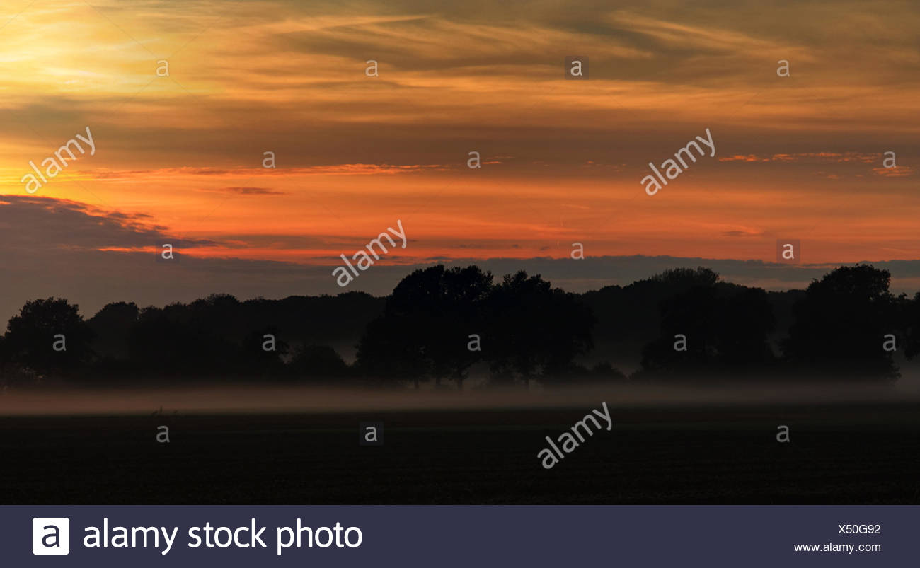 Break of dawn in autumn Stock Photo