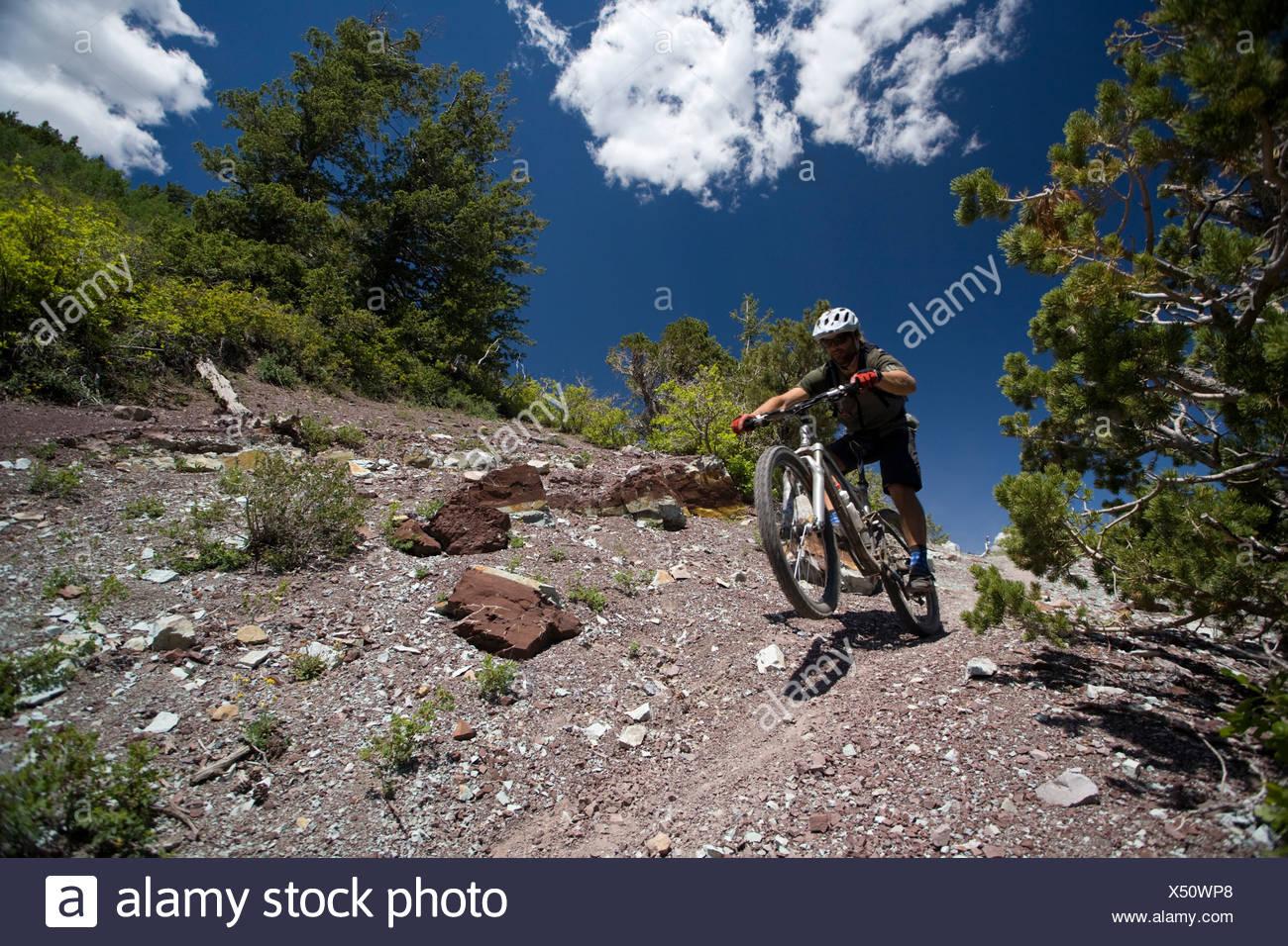 Man mountain biking in the Abajo Mountains near Montecello, Utah. - Stock Image