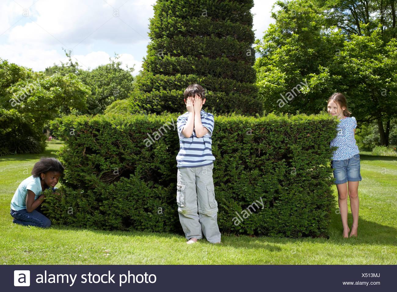 Hide Seek Kids: Three Kids Playing Hide Seek Stock Photos & Three Kids