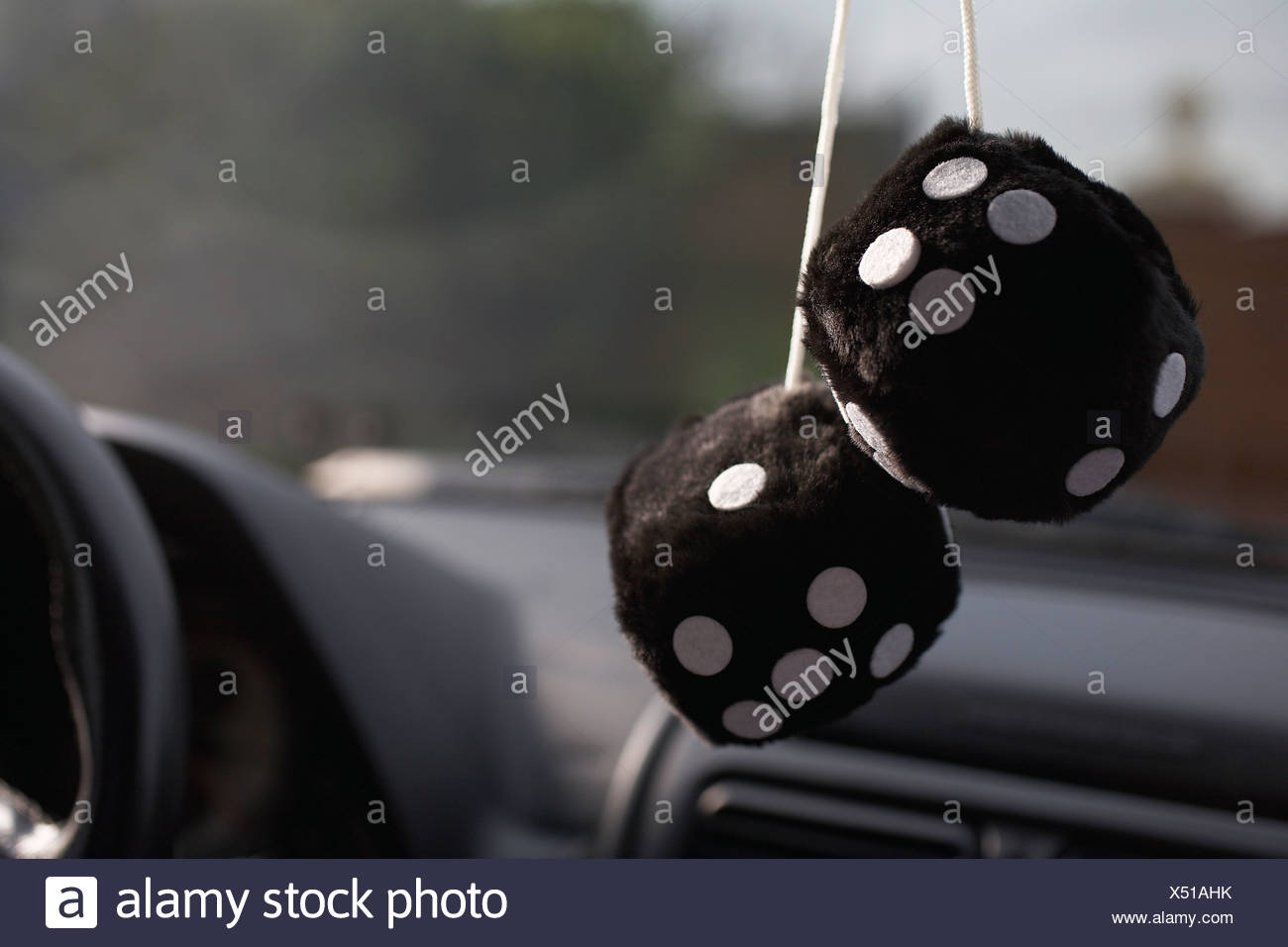 Furry dice hanging in car - Stock Image