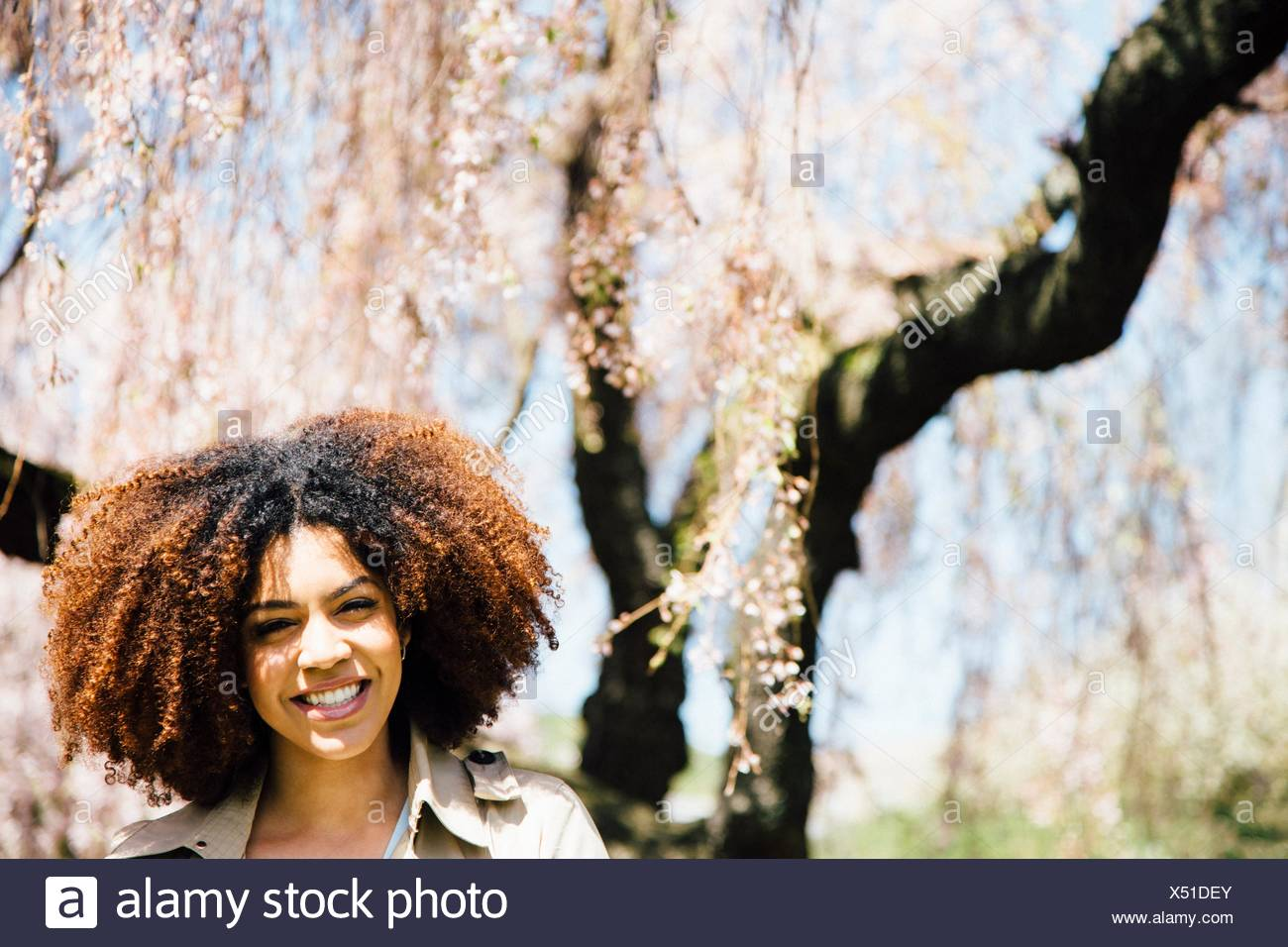 Portrait of mid adult woman, looking at camera, smiling, head and shoulders - Stock Image