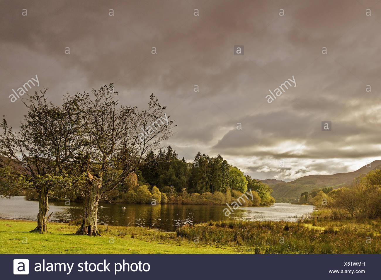 Derwent Water  View Lake District Cumbria UK - Stock Image