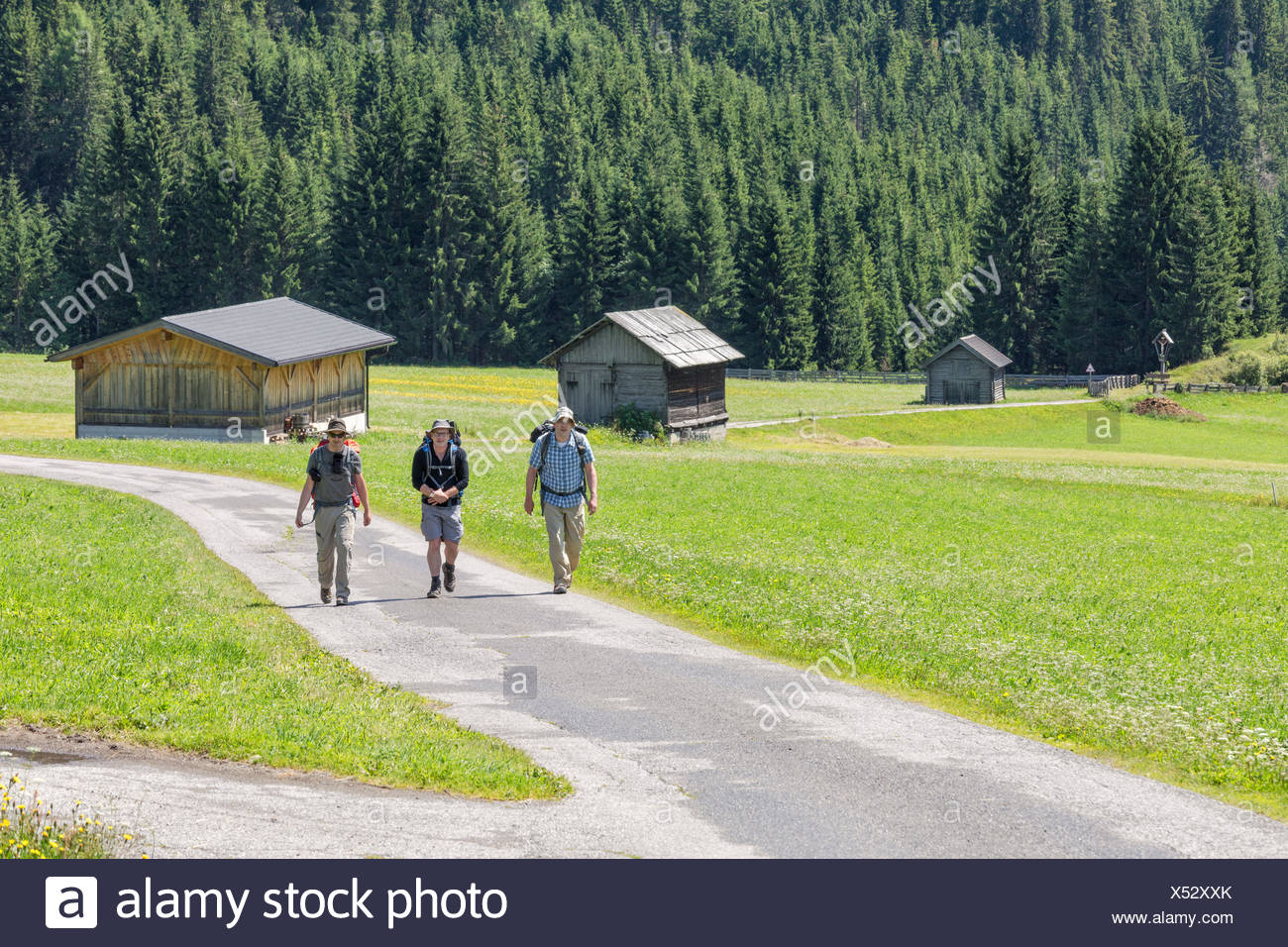 Hikers on an itinerary among the typical barns of the gail valley, Obertilliach, Tiroler Gailtal, East Tyrol, Tyrol, Austria - Stock Image