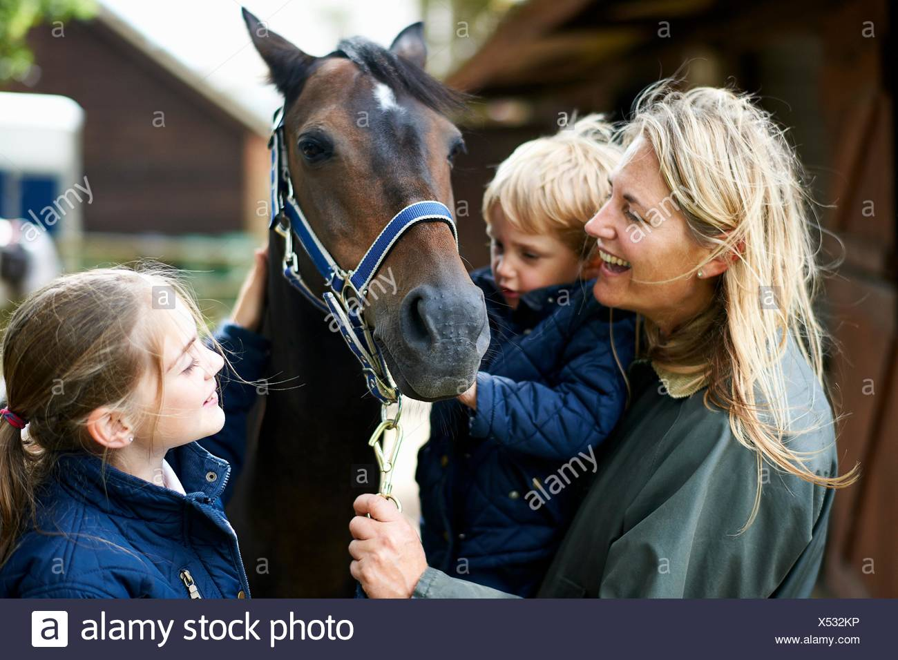 Mature woman with son and daughter petting horse - Stock Image