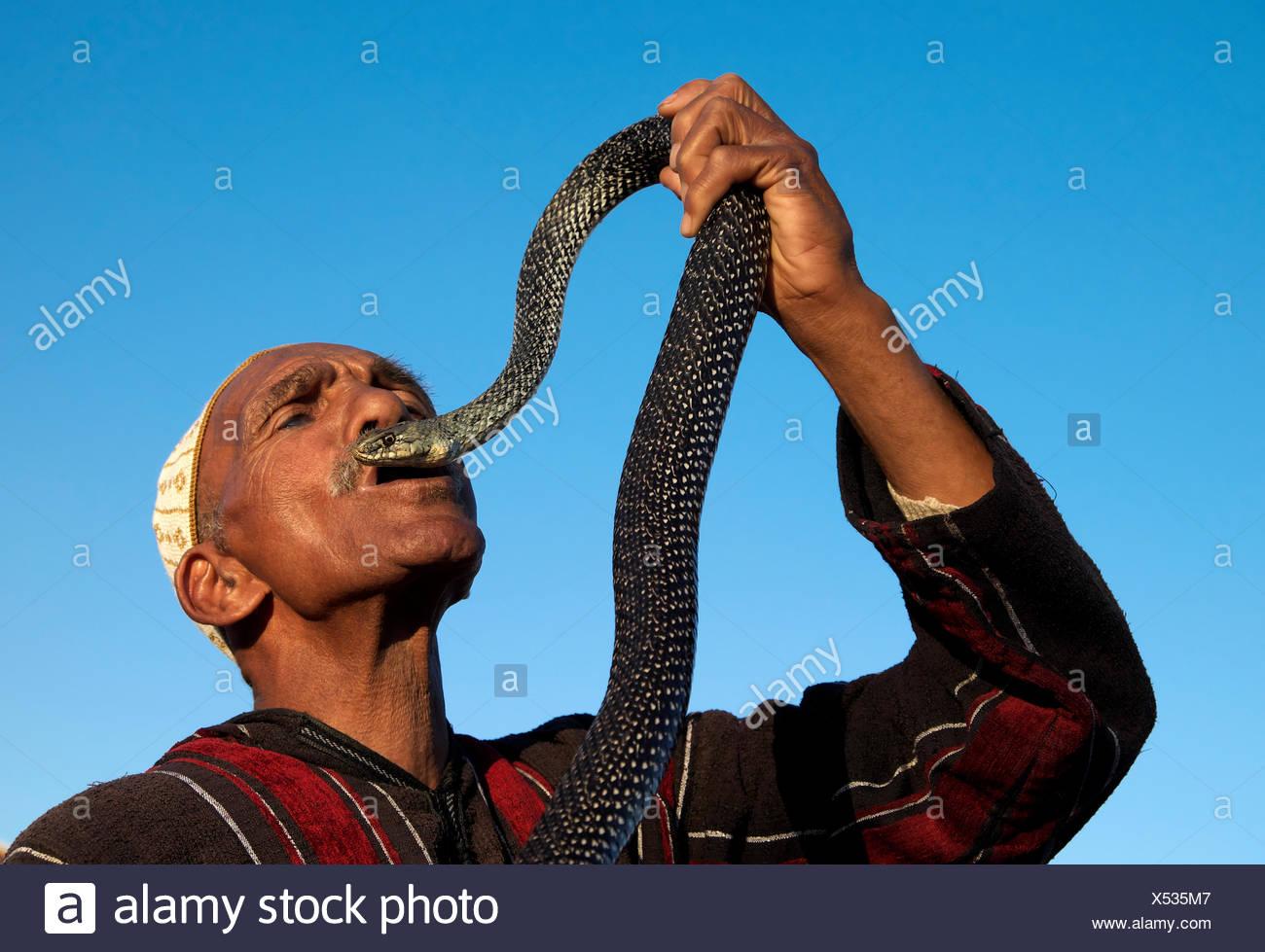 Entertainer holding snake, Marrakech, Marrakech-Tensift-Al Haouz, Morocco - Stock Image