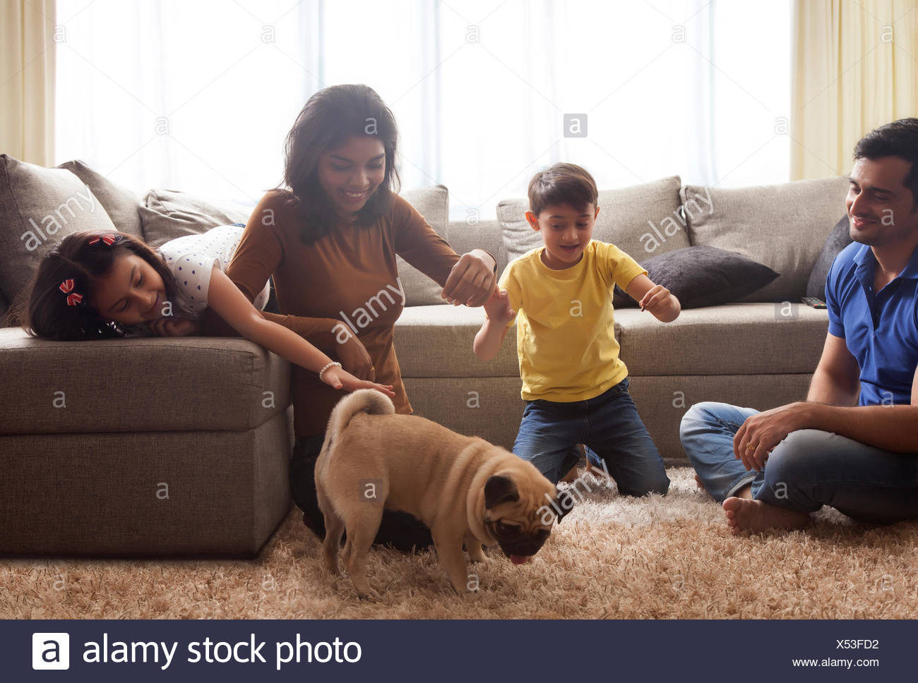 Family playing with pug on carpet - Stock Image