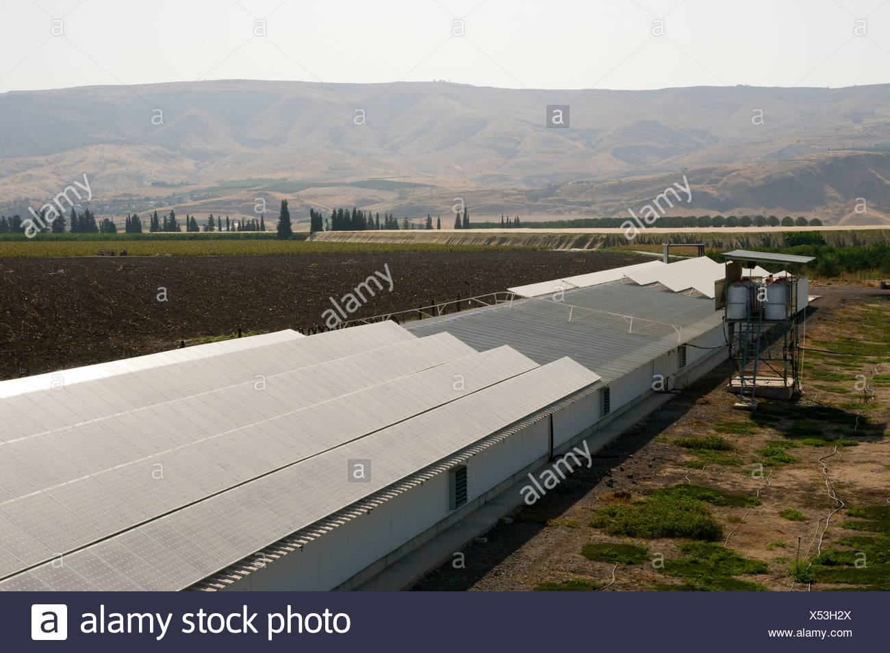 Electricity converting solar panels on a roof of a Turkey coop - Stock Image