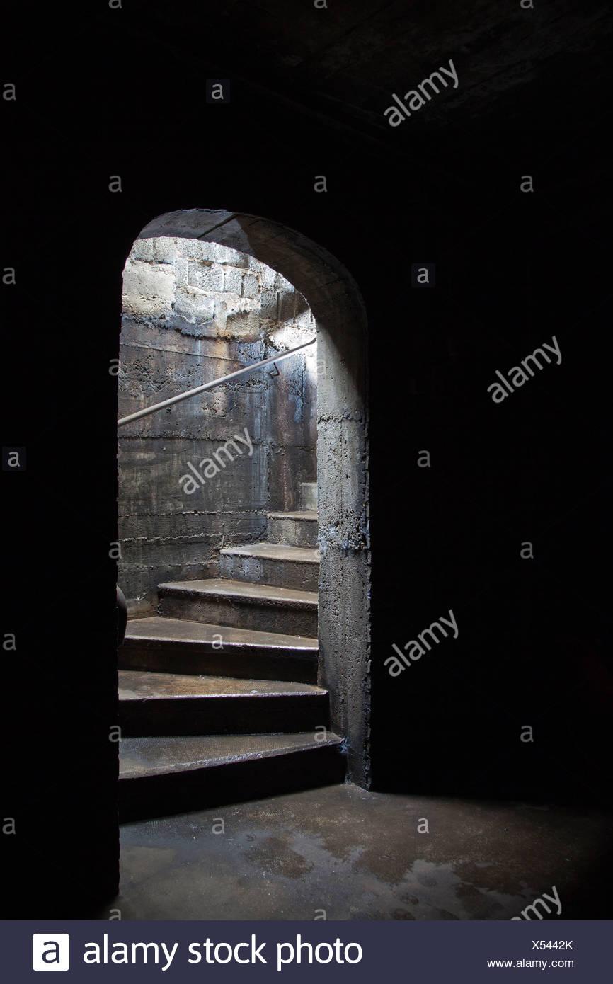 dark basement stairs. Brilliant Basement Stairs Leading To A Dark Cellar Or Basement Inside Dark Basement S