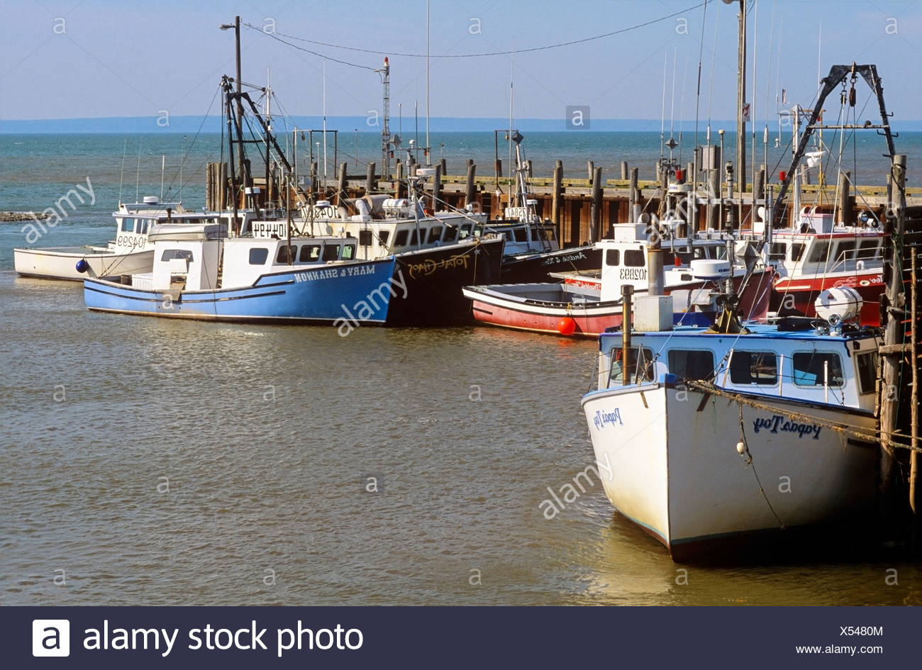 Fishing boats docked at high tide, Alma, Bay of Fundy, New