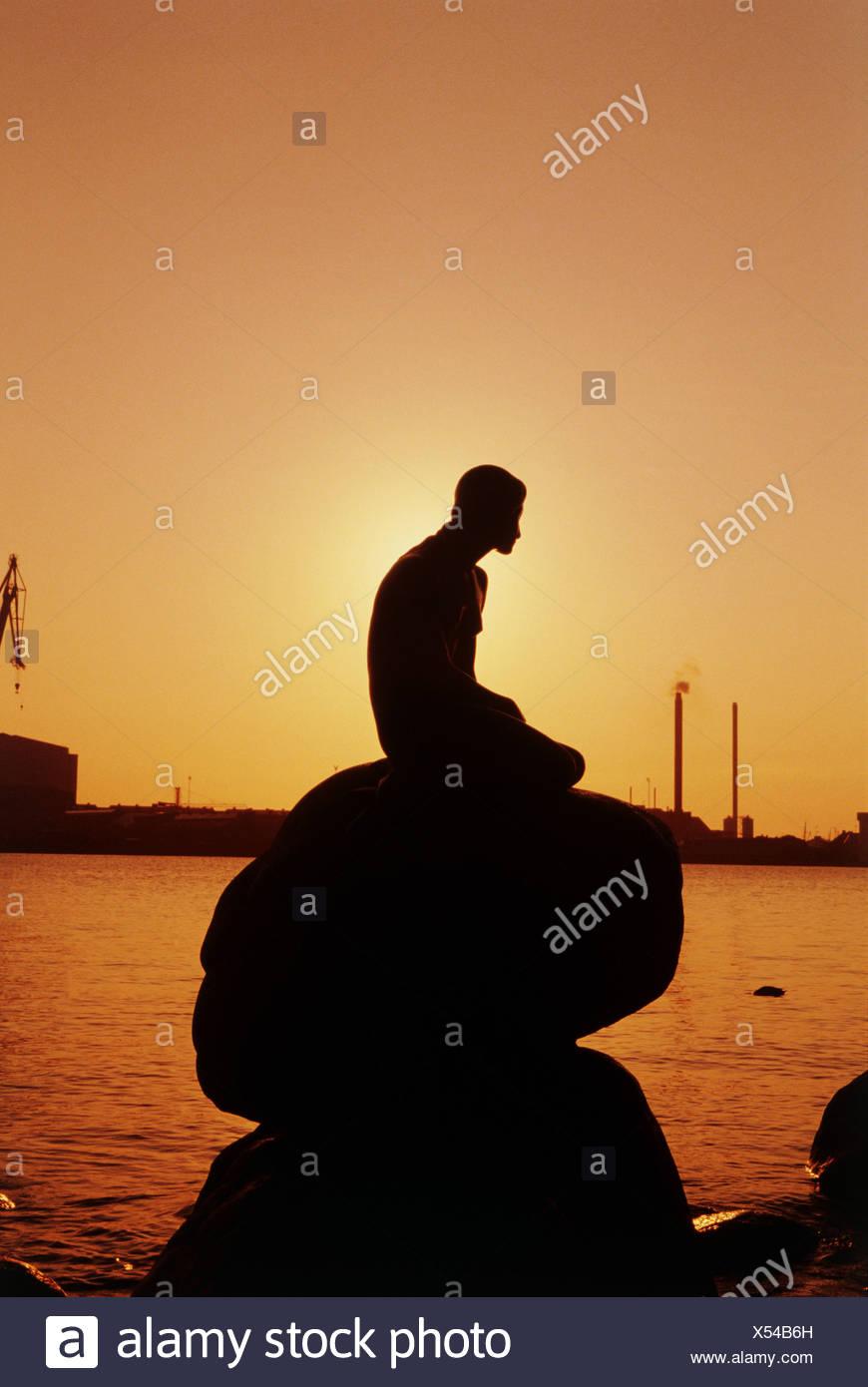 Ariel Sitting On Rock Silhouette