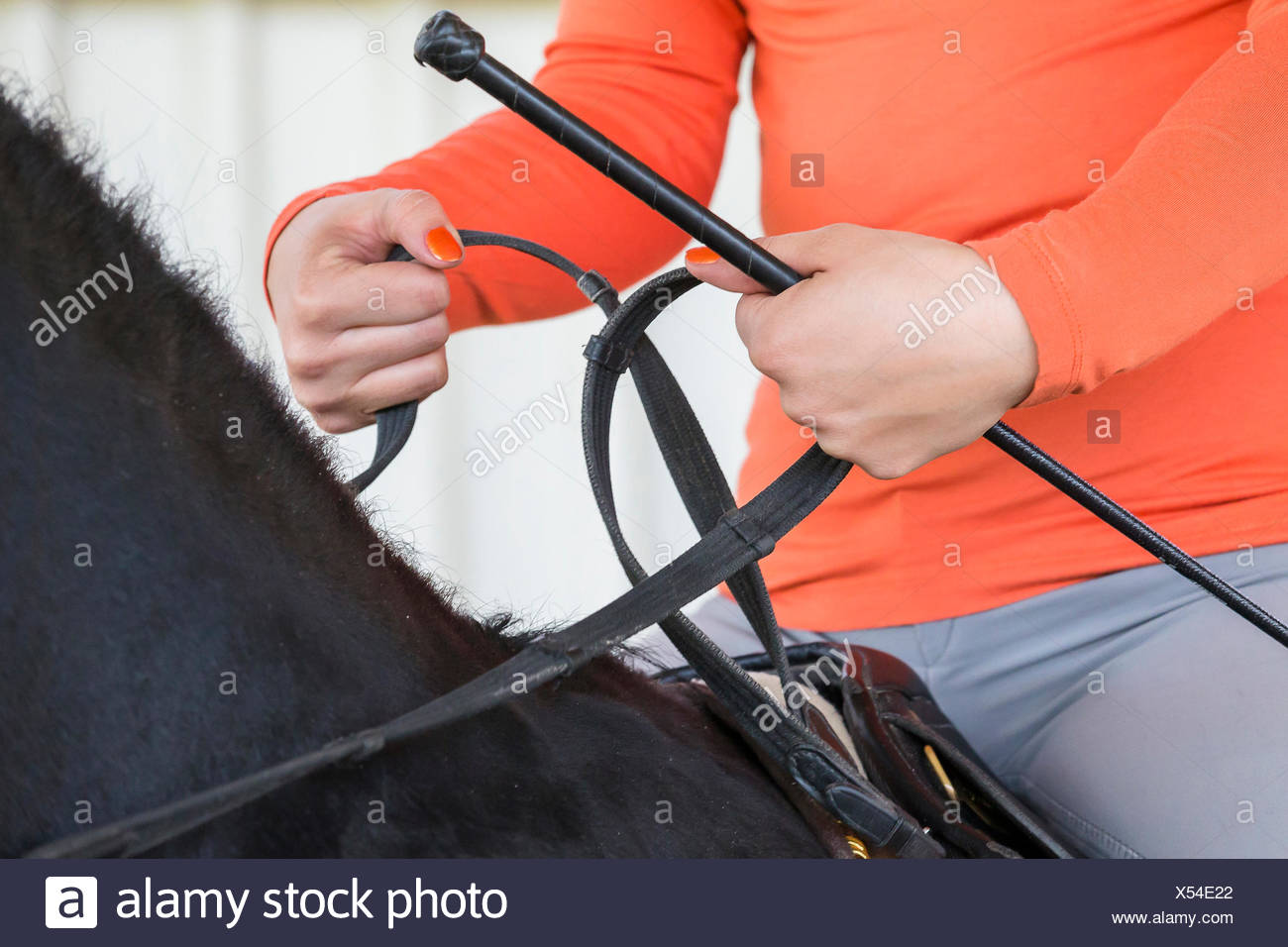 Manner holding the reins Turned-in wrist joint - Stock Image