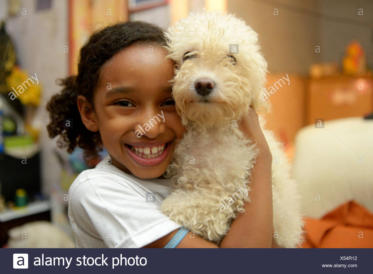 Girl with a poodle in a slum or favela, Jacarezinho favela, Rio de Janeiro, Rio de Janeiro State, Brazil - Stock Image