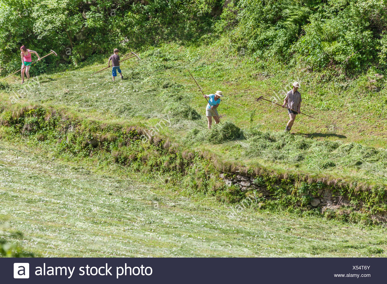 geography / travel, Italy, South Tyrol, peasant family near the hay harvest on the Ahrntal sunny way near St. John in the Ahrntal (Ahrn Valley) , Editorial-Use-Only - Stock Image