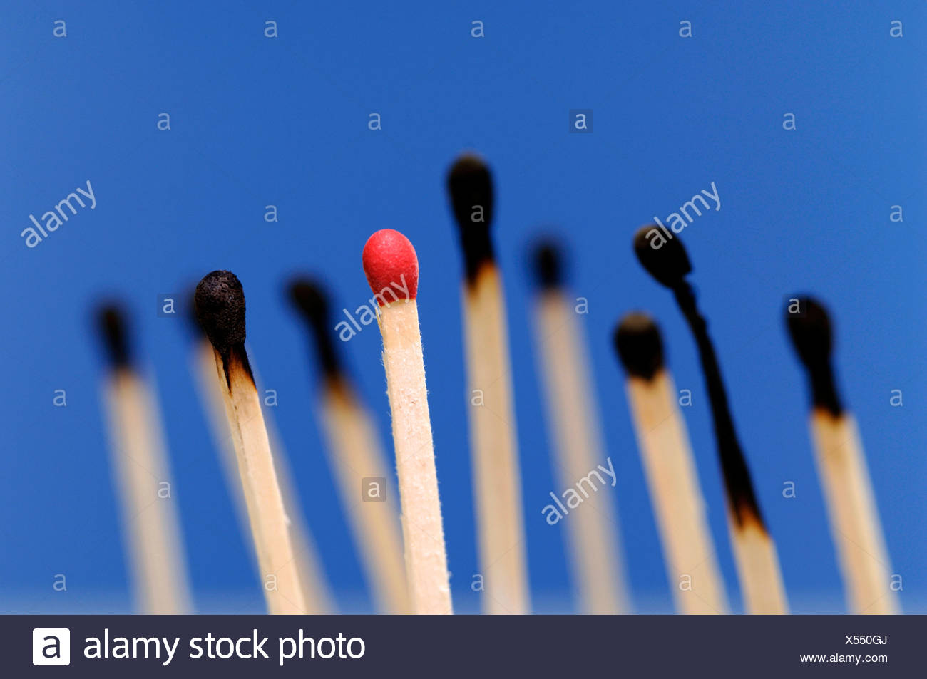 Red match, burned matches in background - Stock Image