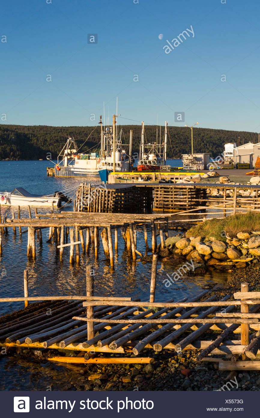Fishing boats tied up at wharf, Cape Broyle, Newfoundland, Canada Stock Photo