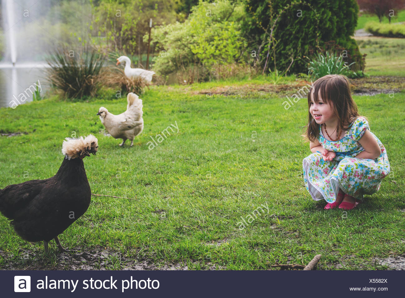 Girl with two chickens and a goose Stock Photo