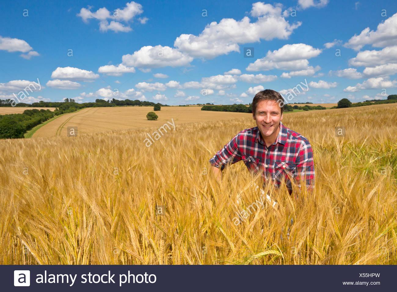 Portrait smiling farmer in sunny rural barley crop field in summer - Stock Image