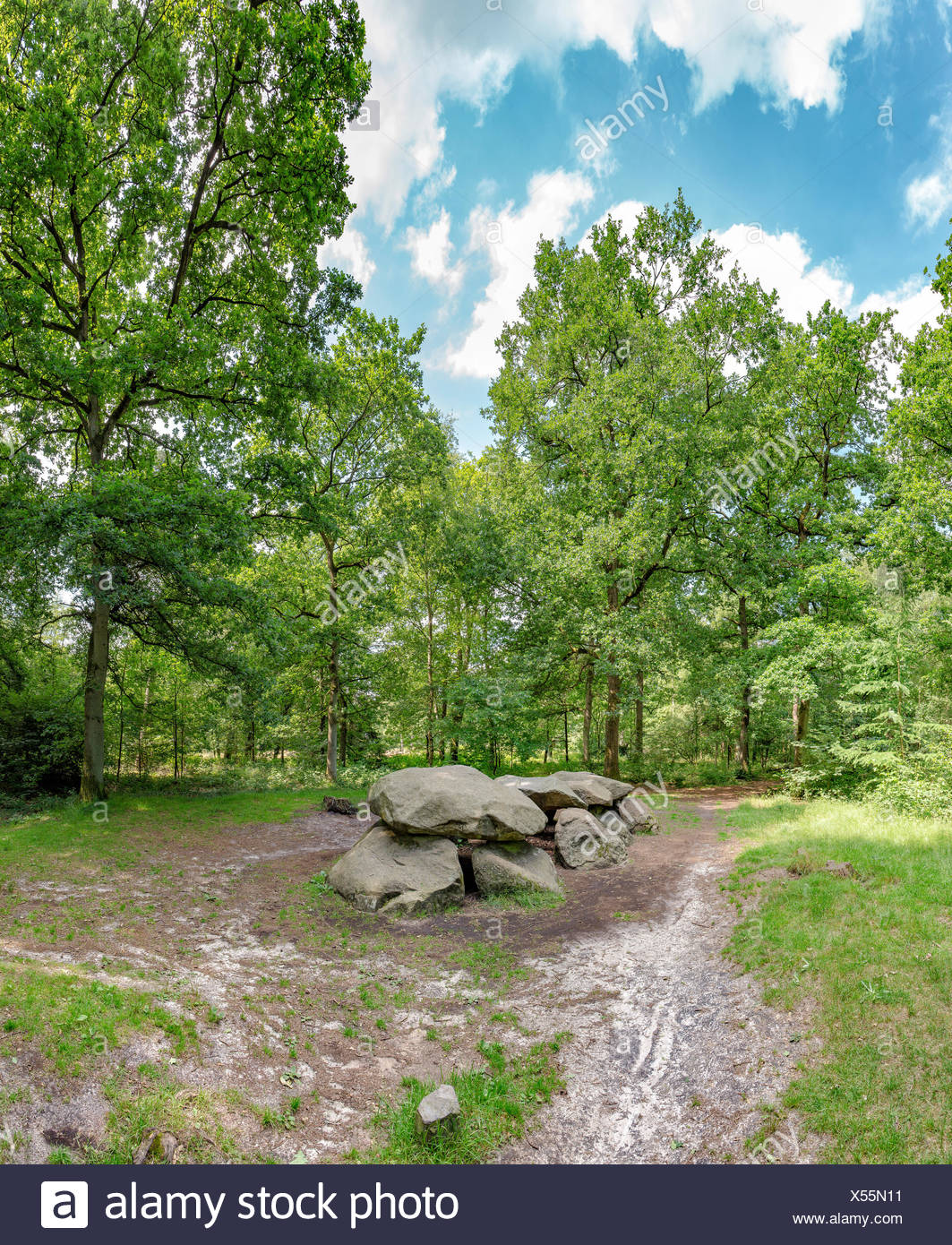 Annen,Drenthe,Megalithic grave in the forestry Schipborg - Stock Image
