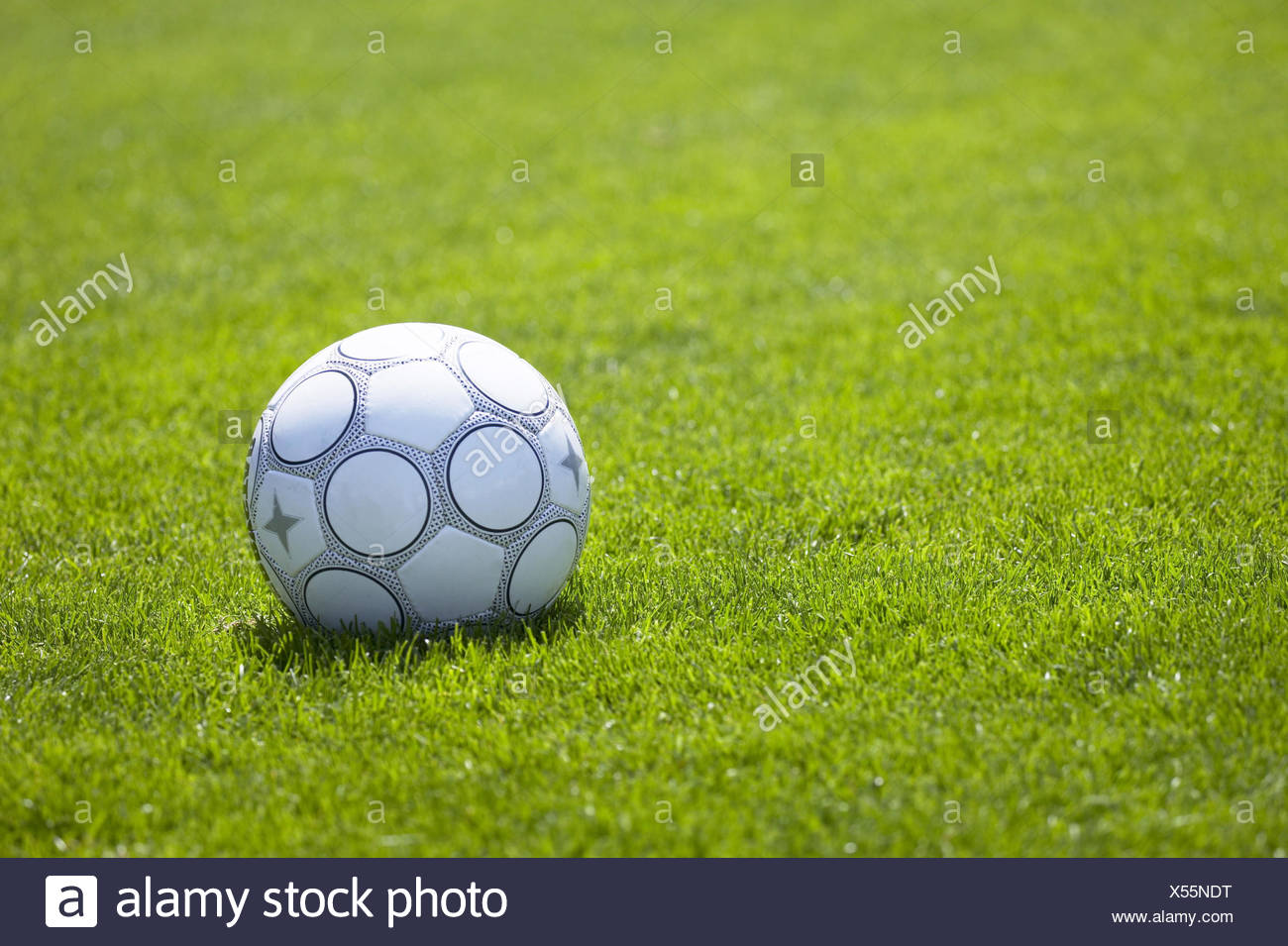 Turfs, football ball, sports device, leather ball ball, black-and-white, ball game, leather ball football, sport, sport, ball sport, football turf, football field, meadow, still life, object photography - Stock Image
