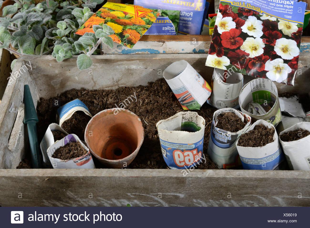 Paper pots - Stock Image