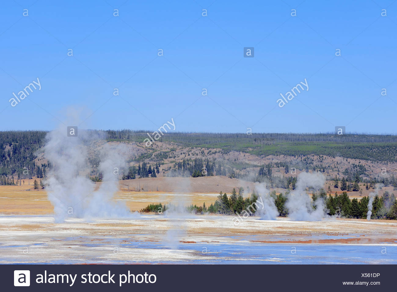Geysers in the Fountain Paint Pot area, Yellowstone National Park, Wyoming, USA - Stock Image