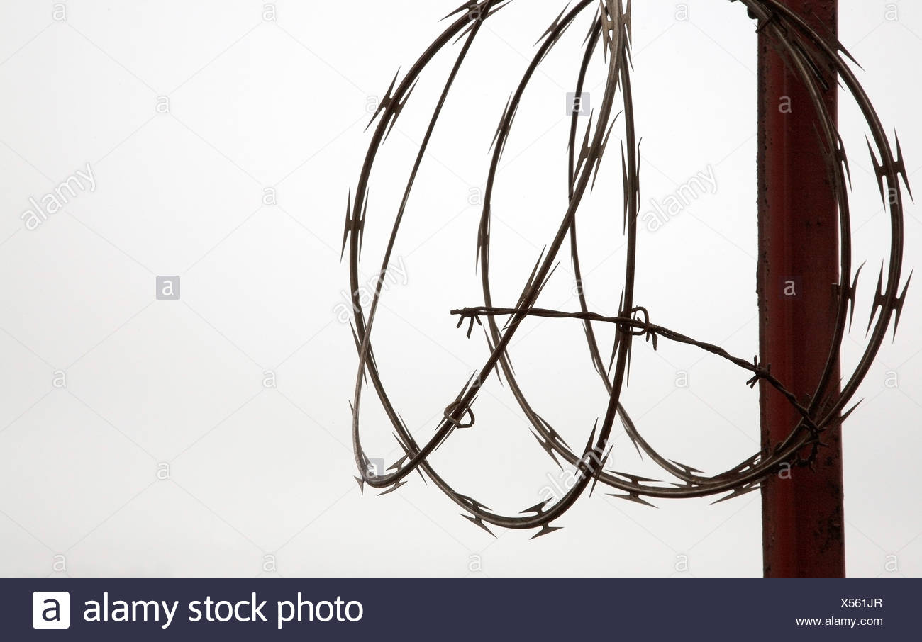 Barbed Wire Barb Wire Coil Stock Photos & Barbed Wire Barb Wire Coil ...