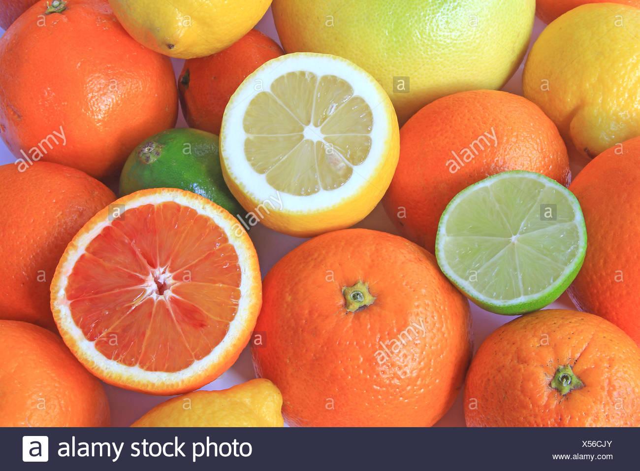 Various citrus fruits - Stock Image