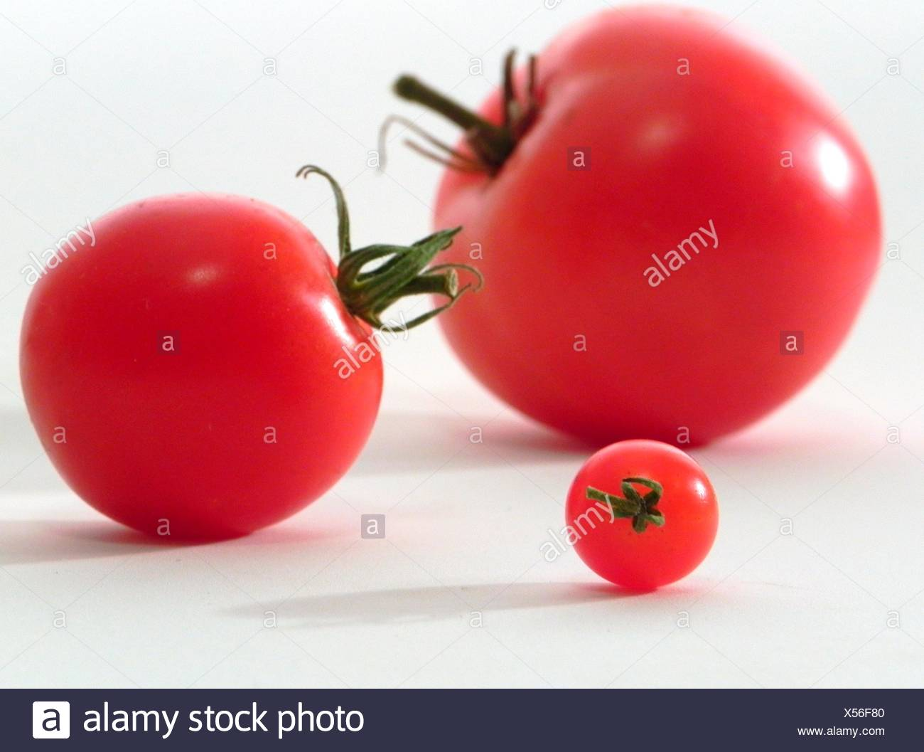Three Ripe Red Heirloom Tomatoes In Three Sizes Currant Cherry