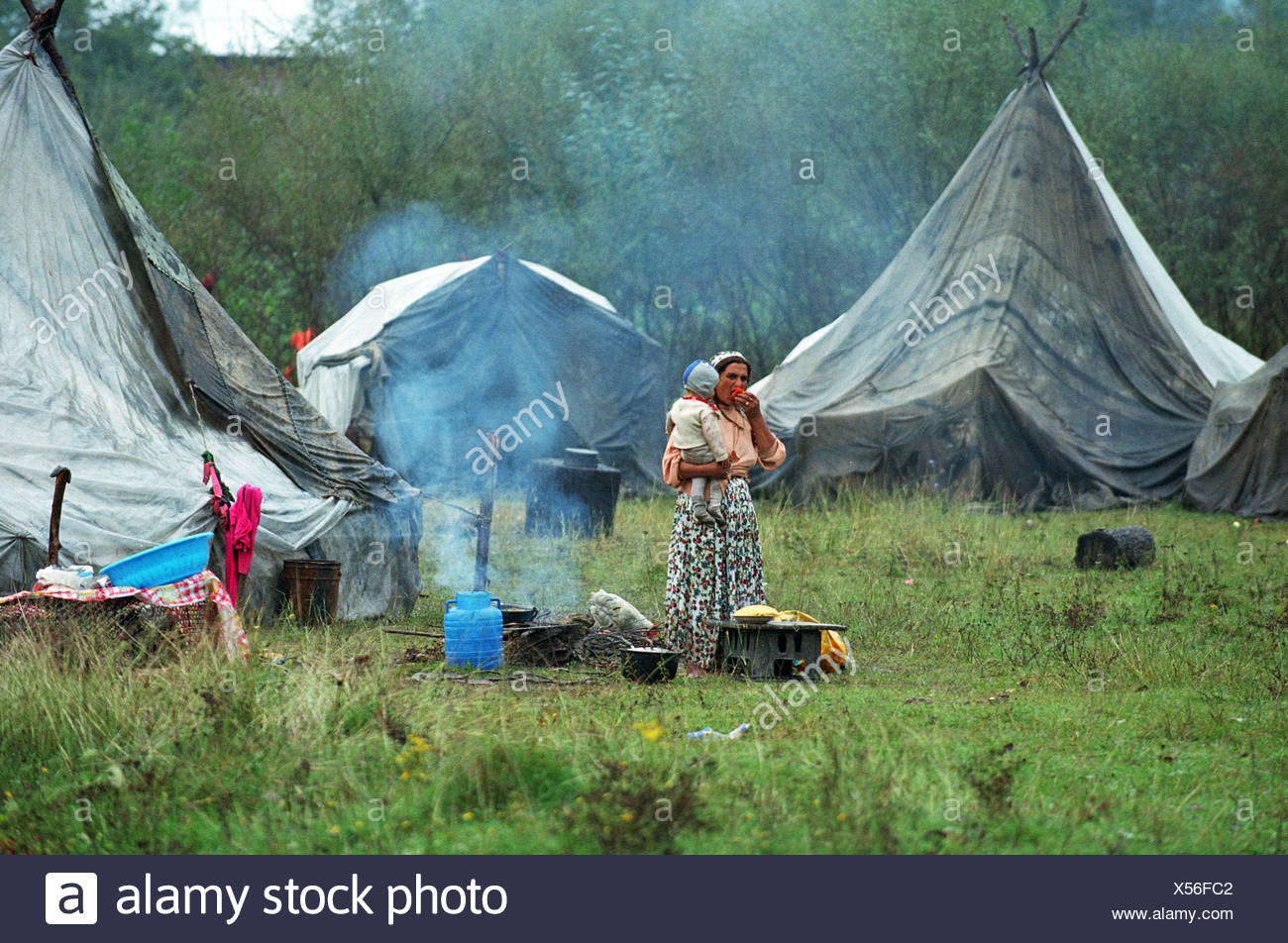 Gypsies, who received 1 million for the construction of a camp, raised in it a hemp plantation