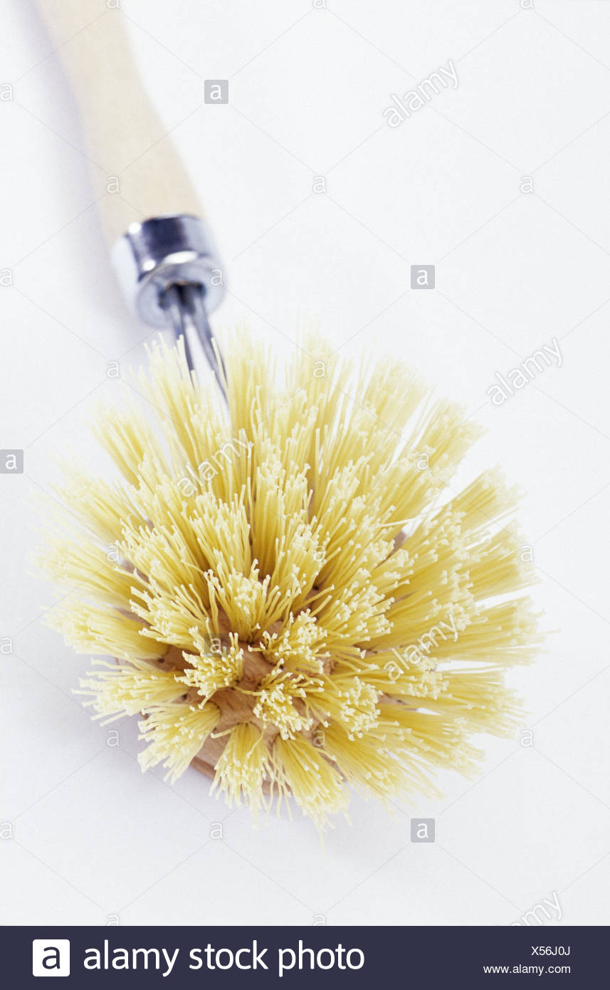 Washing-up brush, wooden, wooden washing-up brush, wooden grip, cuisine, culinary implement, wash up, brush, brightly, bristles, nature bristles, beige, studio, product photography, - Stock Image