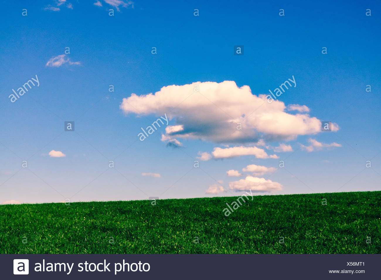 Idyllic View Of Grassy Landscape Against Sky - Stock Image