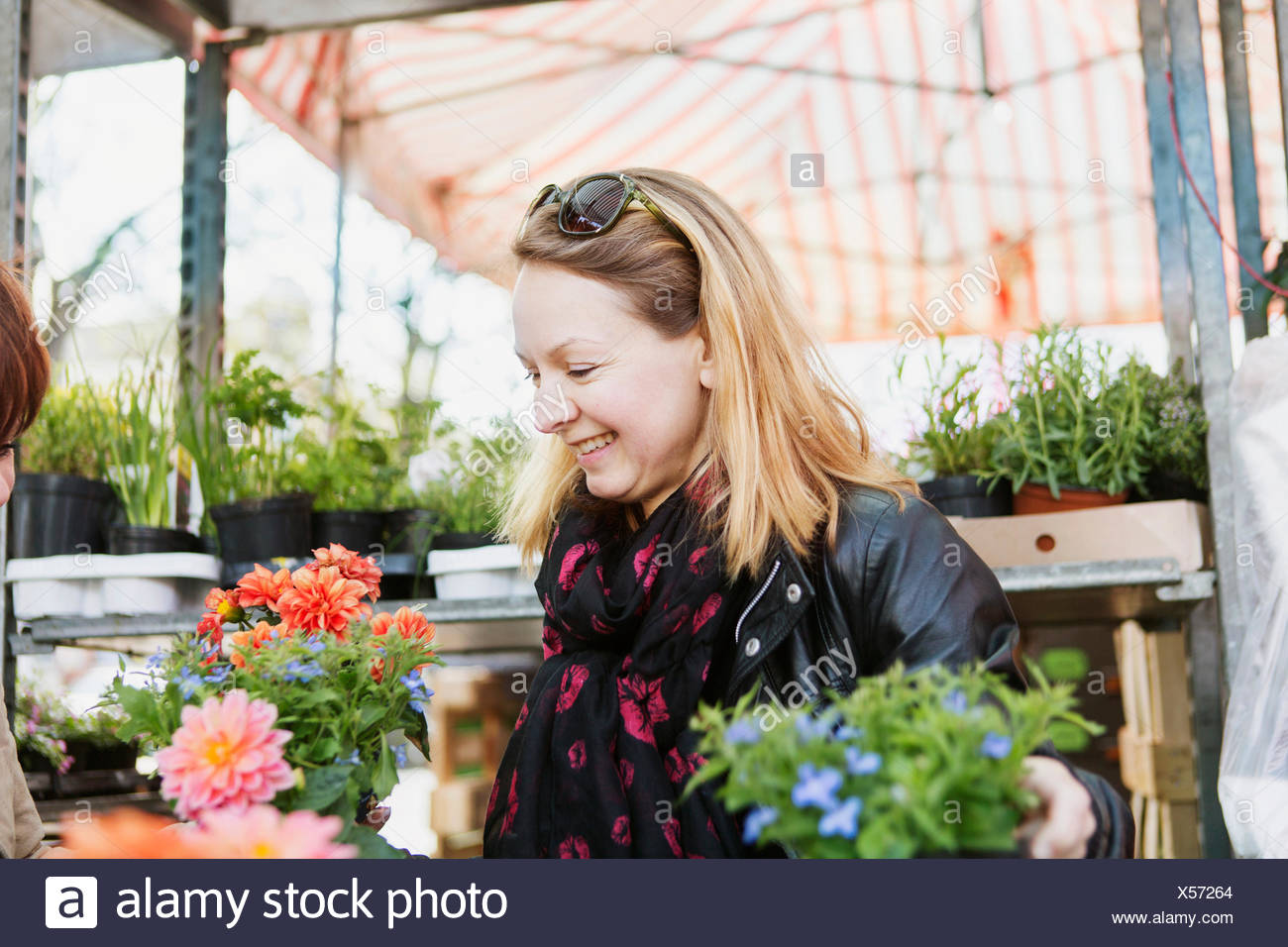 Happy mature woman buying flower plants in nursery - Stock Image