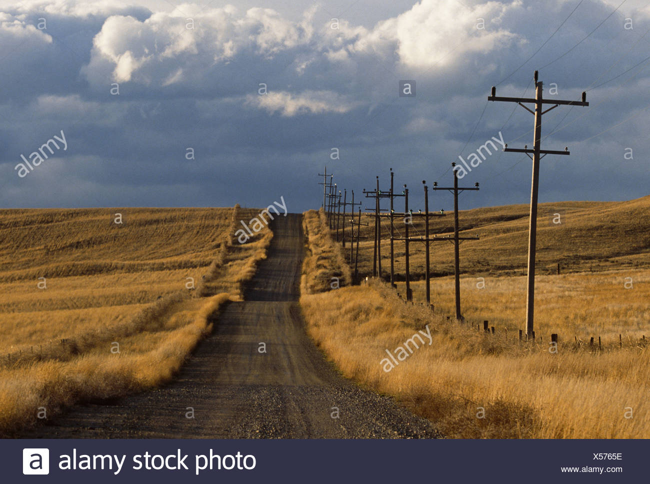 Rural dirt road, Montana - Stock Image