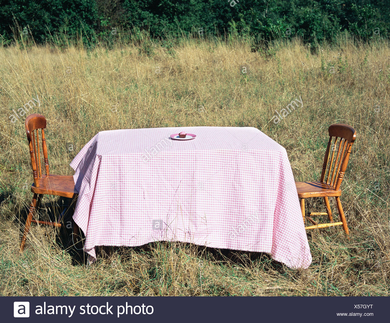 Table and chairs in a field - Stock Image