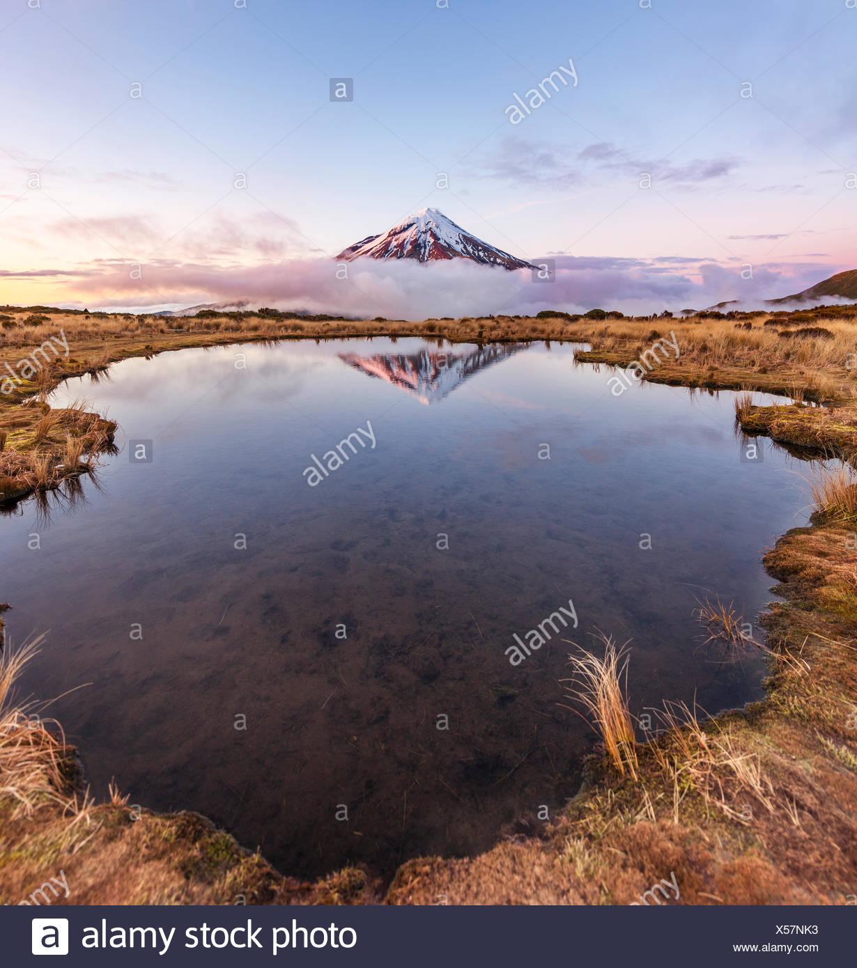 Reflection in Pouakai Tarn lake, pink clouds around stratovolcano Mount Taranaki or Mount Egmont at sunset, Egmont National Park - Stock Image