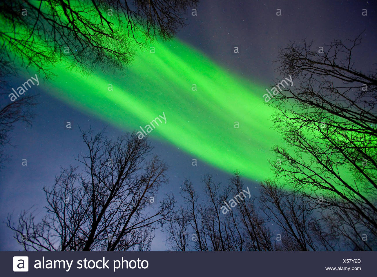 Aurora borealis, Norway, Troms, Tromsoe - Stock Image