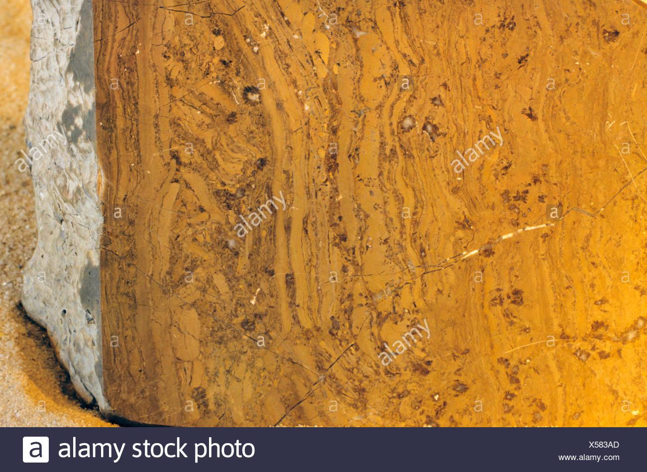 carbonatic microbial mat, Austria - Stock Image