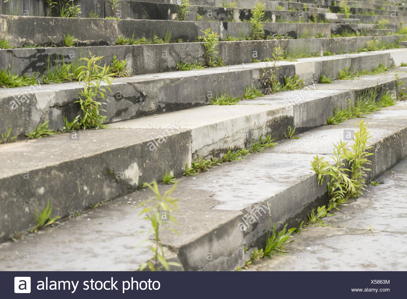 Third Reich Party Rally Grounds - Stock Image