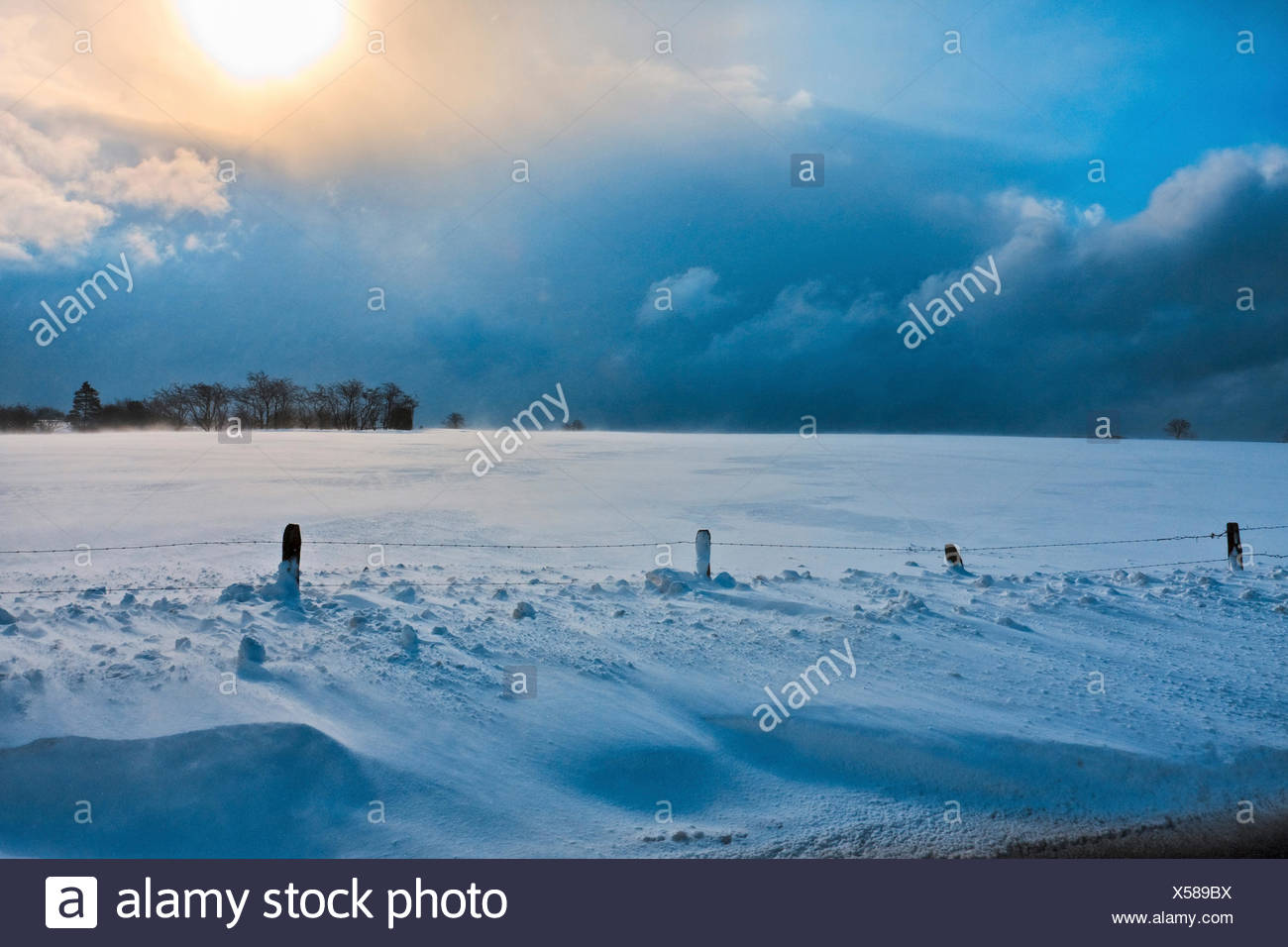 snow bank, Belgium, Ardennen, Winterlandschaft Stock Photo