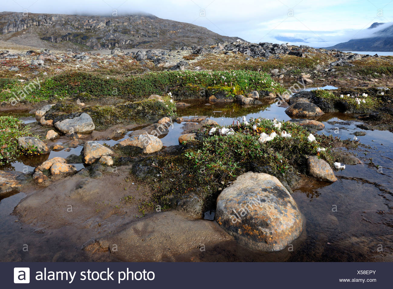 Canso Channel, entry Auyuittuq National Park, Baffin Island, Nunavut, Canada - Stock Image