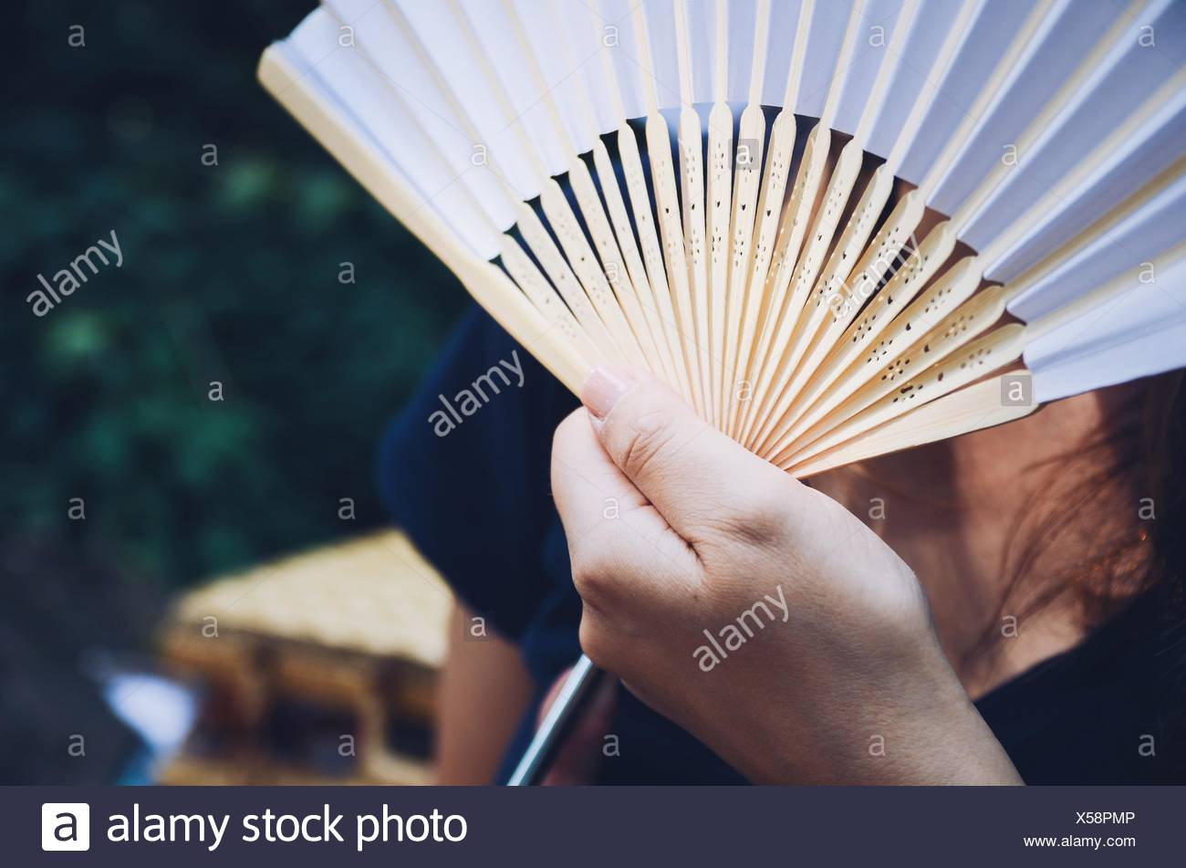 Close-Up Of Hand Holding Fan - Stock Image
