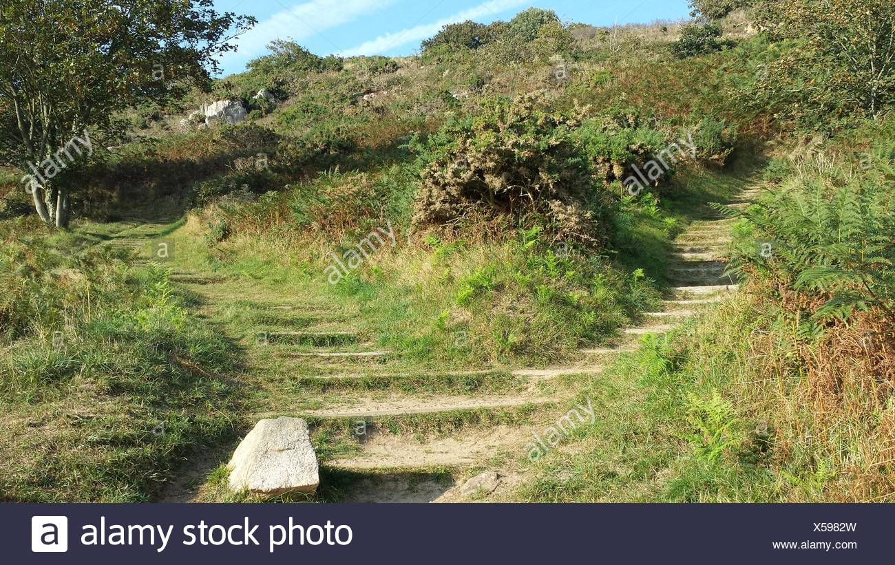 Empty Footpaths - Stock Image